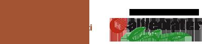 ILAP Logo